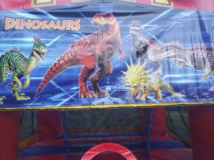 Dinosaurs Combo 4 in 1 Large